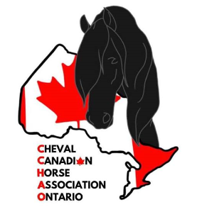 Cheval Canadien Horse Association Ontario
