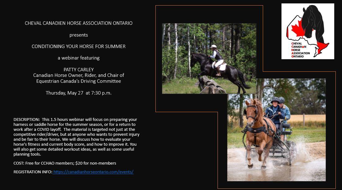 Conditioning Horse Webinar Poster